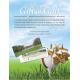 Gift Of Golf